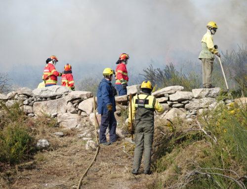 Comissão de Defesa da Floresta aprovou Plano Operacional Municipal